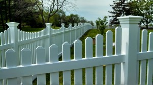 Fence Pic 1