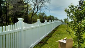 Fence Pic 3
